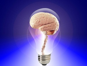 brain-20424_640(1)