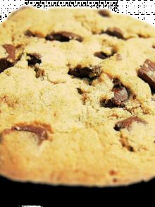 Informativa sulla privacy e sui cookies