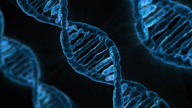 Il DNA può generare campi elettromagnetici: la scoperta di Montagnier