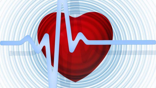 Il cuore: il nostro terzo cervello con un potente campo elettromagnetico